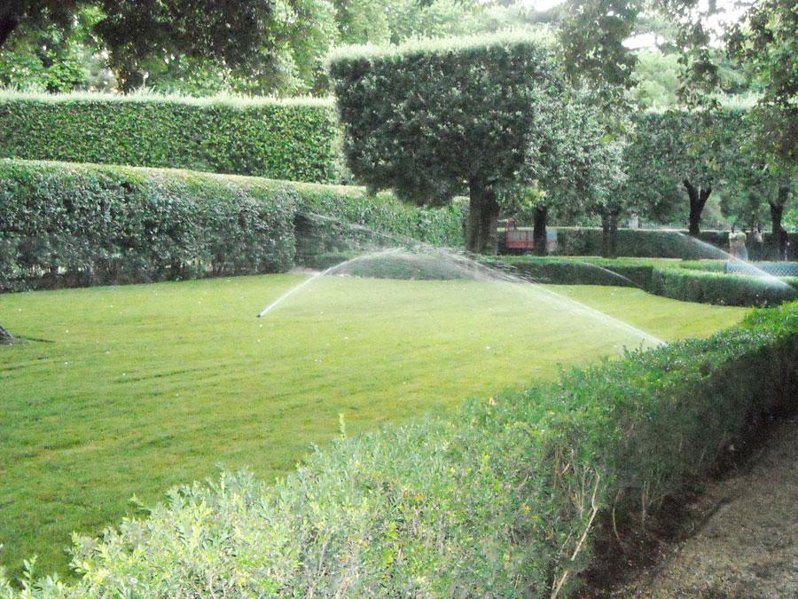 Tappeto erboso e impianti di irrigazione