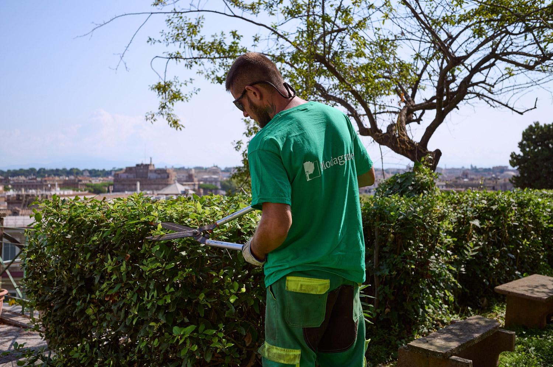 Manutenzione giardini e terrazzi