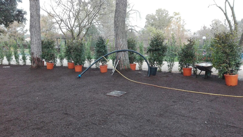 Manutenzione giardini e impianti di irrigazione